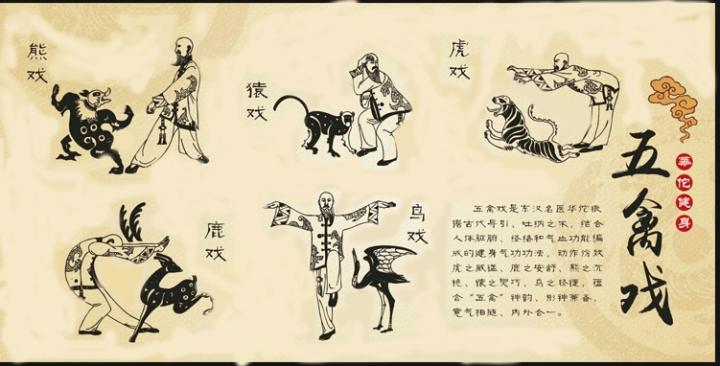 cinque animali